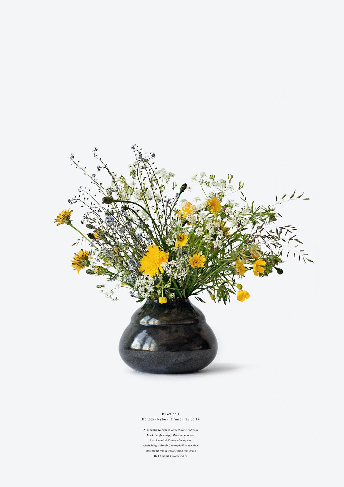 Camilla Berner, Planteindsamling #1 fra Krinsen, Kongens Nytorv, 2015